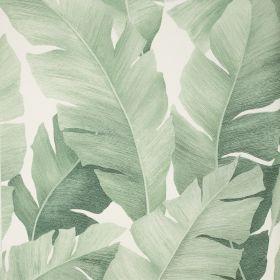 Papel pintado Haruki 4