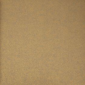 Tadashi 1