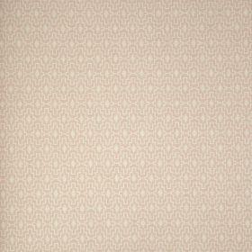 Papel pintado Pachypodium 4