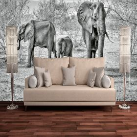 Family Elefantes